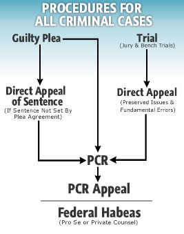 Flow Chart Representing the Procedures for All Criminal Cases
