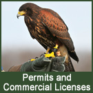 Permits and Commercial Licenses