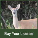 Buy Your License