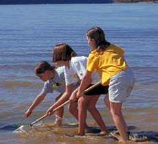 Kids collecting specimens at Lake Monroe