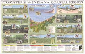 2005 Ecosystems of the Indiana Coastal Region poster