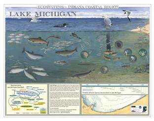 2007 Ecosystems of the Indiana Coastal Region poster
