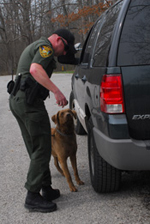 Officer and K-9 search a vehicle for illegal game