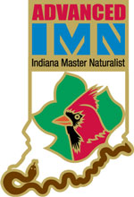 Advanced IMN logo