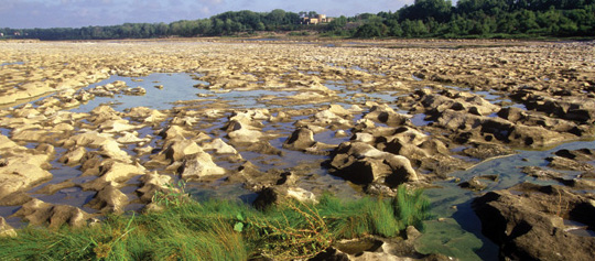 Fossil beds at Falls of the Ohio State Park.