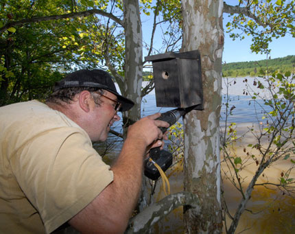 Dnr Wildlife Management On Reservoirs