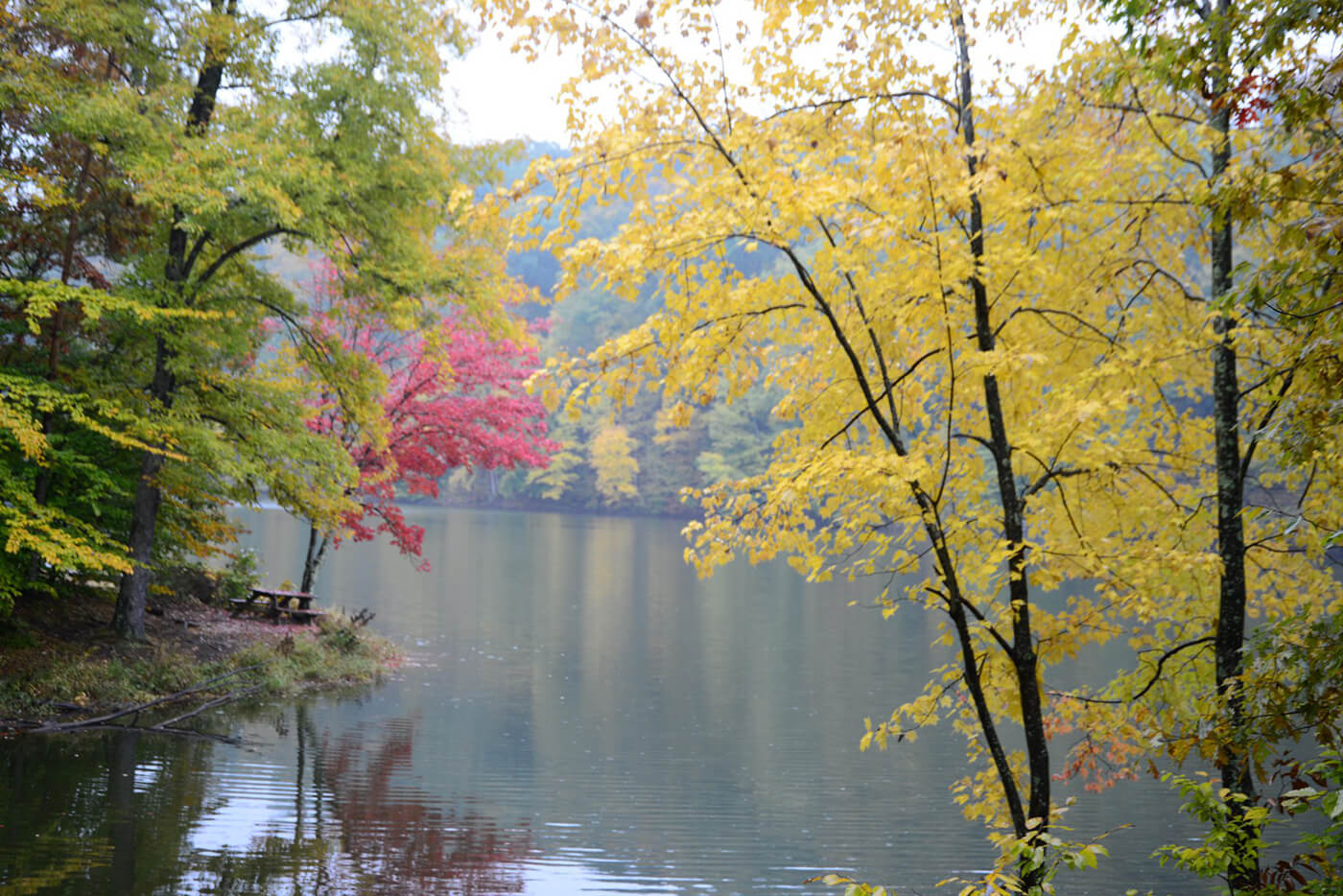 lake with fall trees