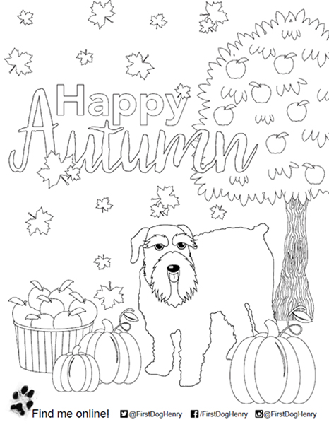 First Lady Janet Holcomb Henry S Coloring Pages