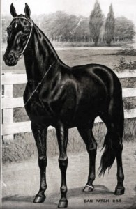 Dan Patch – A Hoosier Born Horse Legend