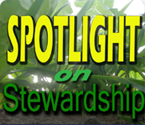 SOS: Spotlight on Stewardship
