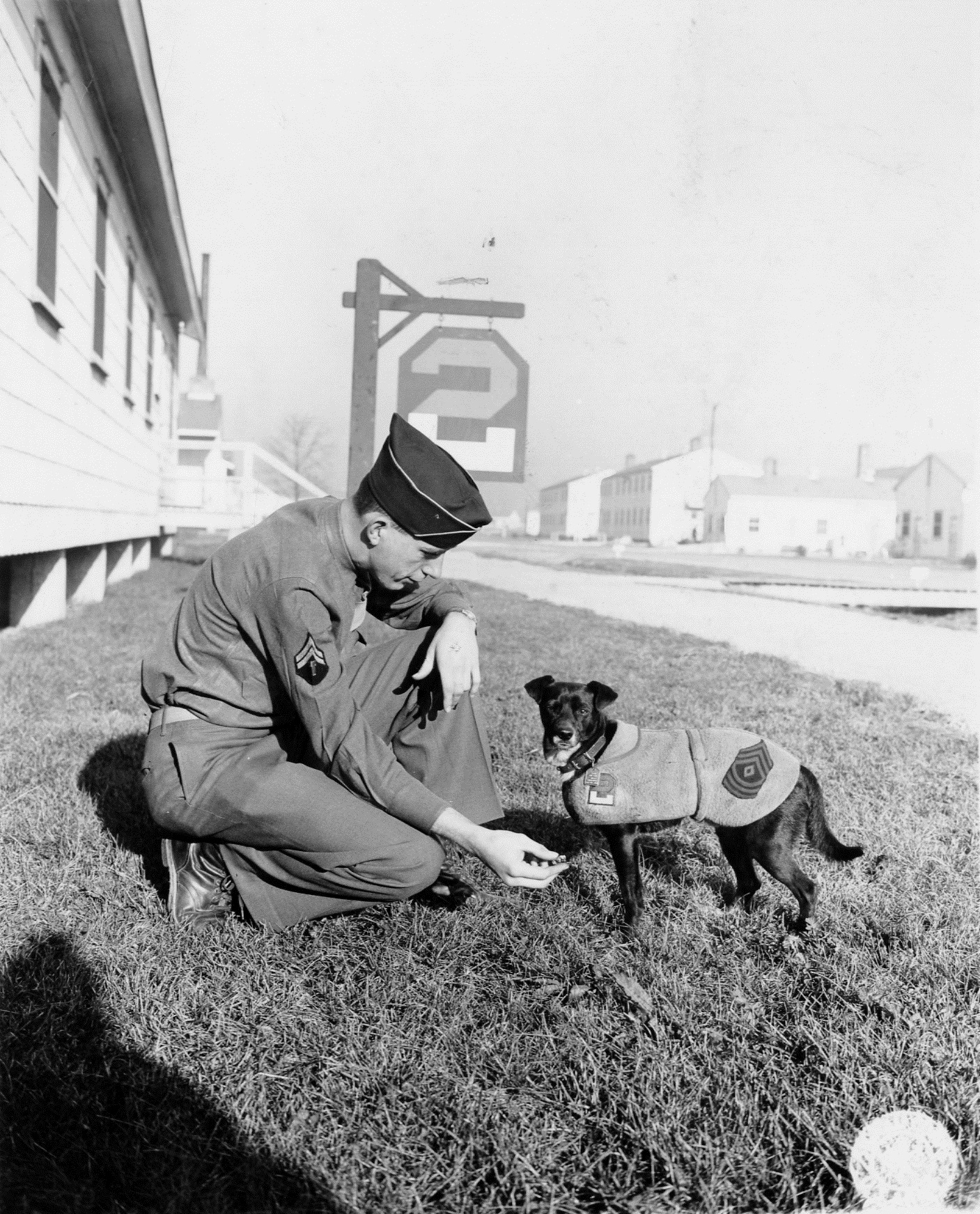 Soldier offering mascot 'Buddy' a treat, 1943 December 4.