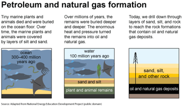 Petroleum and natural gas formation